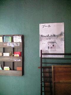 cafe tit-090916 007.JPG