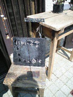 hatohane-090403 001.JPG