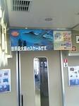 kaiyukan_koukoku.jpg